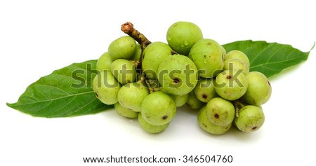 Fresh figs (Ficus glomerata) fruits isolated on white background
