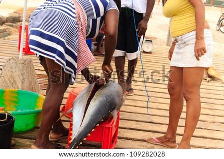 Fresh fish and fisherman in Santa Maria, Sal Island, Cape Verde africa - stock photo