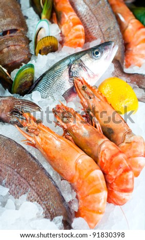 Brain-Boosting, Healthy Fish Recipes