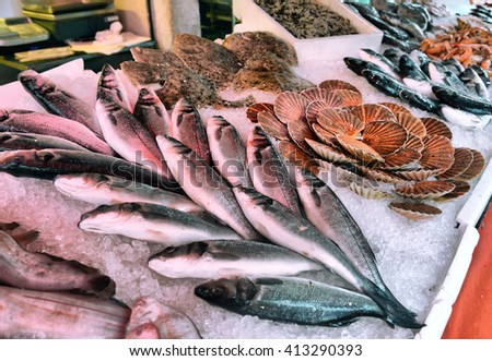 fresh fish and seafood on display in a fish market