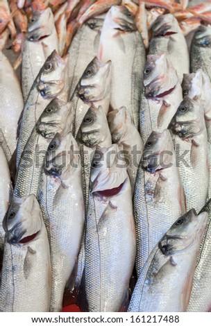 Fresh fish at fish market - stock photo