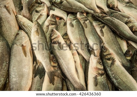 Fresh fish  at the  market of old City of Akko. Israel. - stock photo