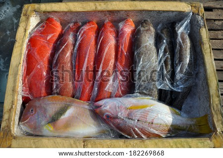 Fresh fish in a seafood market in Vietnam - stock photo