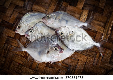 Fresh fish in market. Seafood background. - stock photo