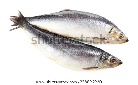 Fresh fish isolated on white - stock photo