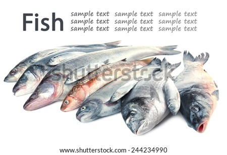 Fresh fish, isolated on white - stock photo