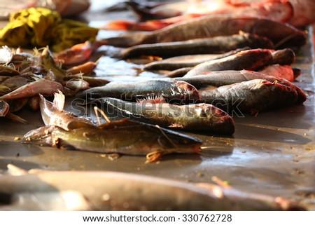 Fresh fish market - stock photo