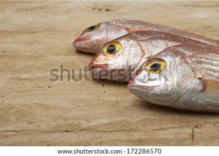 Fresh fish, red snapper in a plate