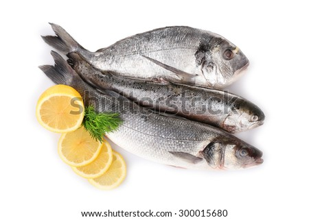 Fresh fish with dill and lemon isolated on white - stock photo