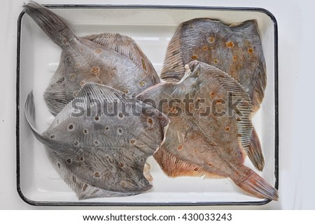 Fresh fishes flounders on Enameled tray