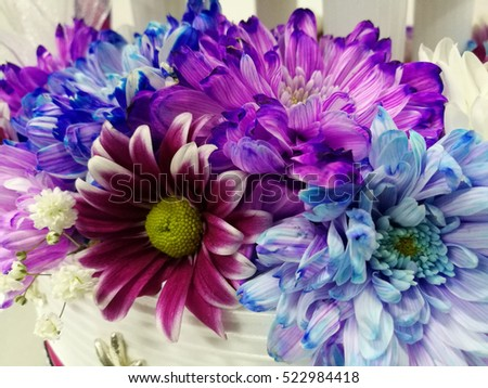 Fresh flower for decoration