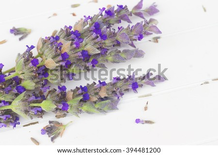 Fresh  flowers close up on white wooden table - stock photo