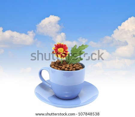 Fresh flowers in a blue coffee mug - stock photo