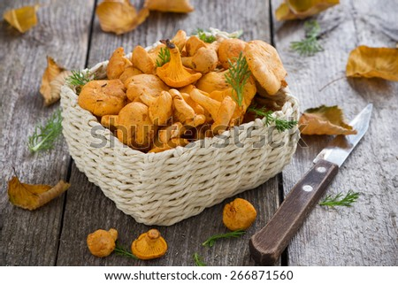 fresh forest chanterelle mushrooms in a basket on wooden table, horizontal - stock photo