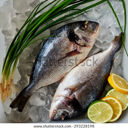 Fresh frozen Dorado fishermen brought in a plastic tray in a luxury seafood restaurant - stock photo