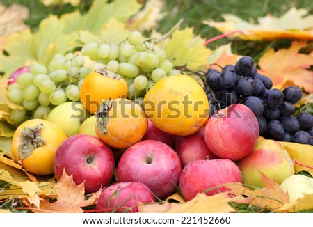 Fresh fruit apples maple autumn harvest