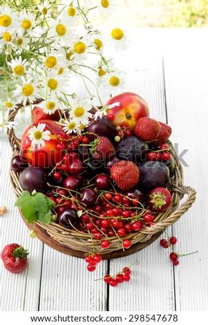fresh fruit in the garden - stock photo