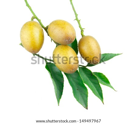 Fresh fruits with leaf isolated on white background