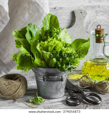 Fresh garden herbs in a metal bucket, olive oil, old vintage scissors on a light wooden background. Rustic still life