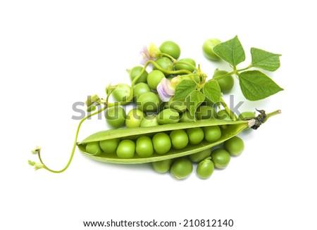 Fresh Garden Peas  on a  white  background - stock photo