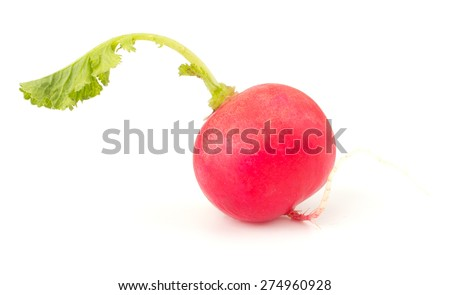 Fresh garden radish isolated on white background cutout - stock photo