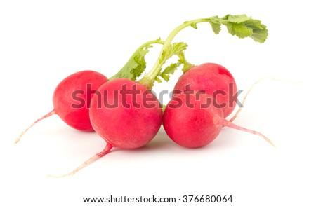 Fresh garden radish isolated on white background cutout - stock photo