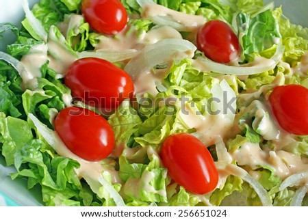 Fresh garden salad with ripe cherry tomatoes, sliced onions and creamy dressing - stock photo