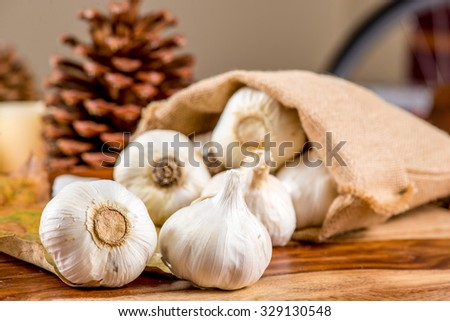 Fresh garlic   Fresh garlic, fresh garlic, Fresh garlic, fresh garlic, Fresh garlic, fresh garlic, Fresh garlic, fresh garlic, Fresh garlic, fresh garlic, Fresh garlic, fresh garlic, Fresh garlic - stock photo