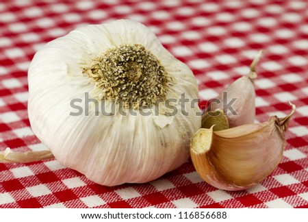 Fresh garlic isolated in red and white checkered table cloth. - stock photo