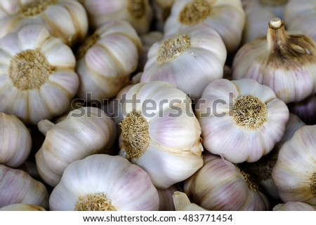 Fresh garlic on the market