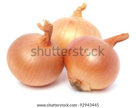 Fresh golden onions - stock photo