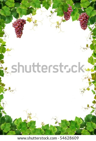 Fresh grapevine frame with pink grapes, isolated on white background