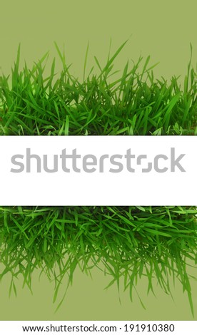 Fresh grass, blank white horizontal banner with green background