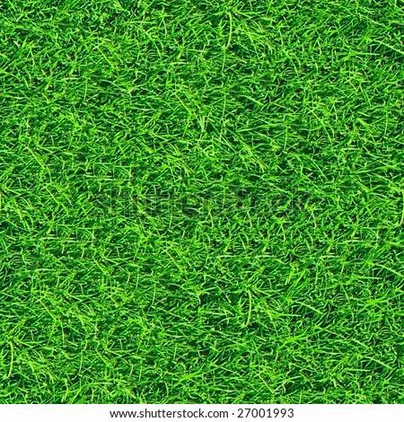 Fresh grass seamless pattern. - stock photo