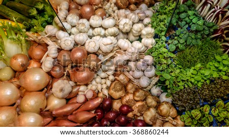 Fresh green aromatic herbs, garlic, onion, fennel, radicchio salad, french endive. Concept of healthy eating, abstinence from meat, vegetarianism, raw food, diet. Close-up - stock photo