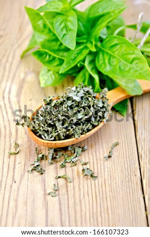 Fresh green basil and dry on a spoon on the background of wooden boards