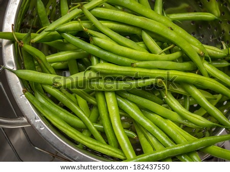 Fresh green beans washed in a bowl  - stock photo