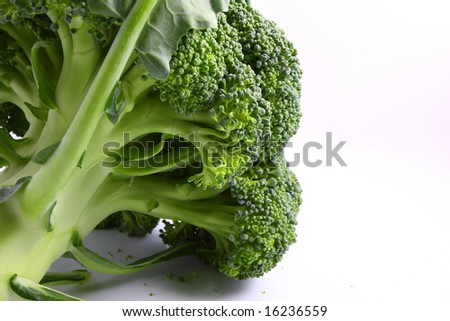 Fresh green Broccoli, isolated on white, close up