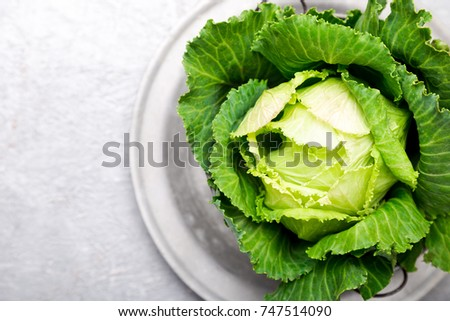 Fresh green cabbage in meatal plate on grey background. Top view. Copy space
