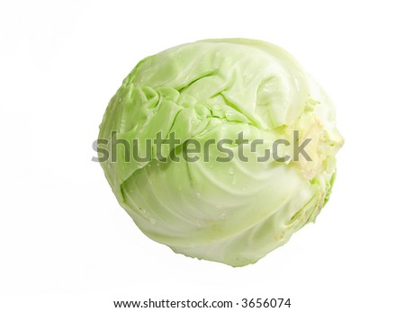 Fresh green cabbage - isolated - stock photo