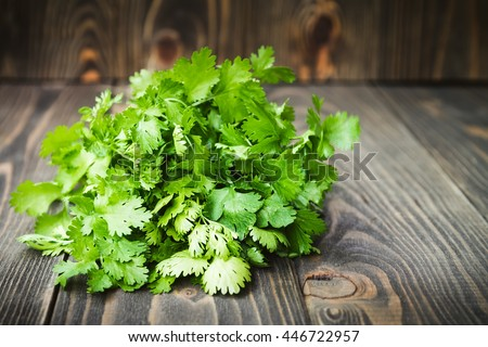 Coriander Root Stock Images Royalty Free Images Vectors