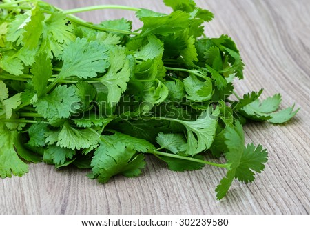 Fresh green Coriander leaves heap on the wood background - stock photo