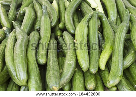 Fresh green cucumber collection outdoor on street market