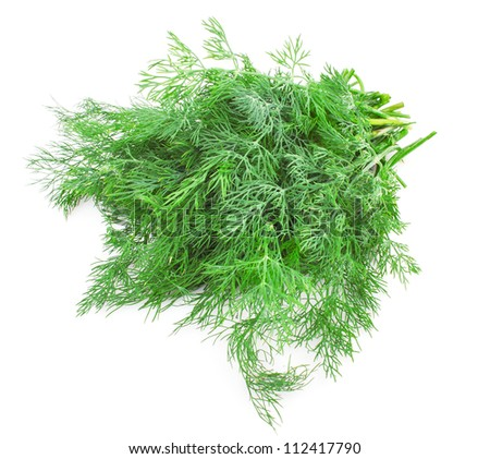 Fresh green dill isolated on white background, food ingredient - stock photo