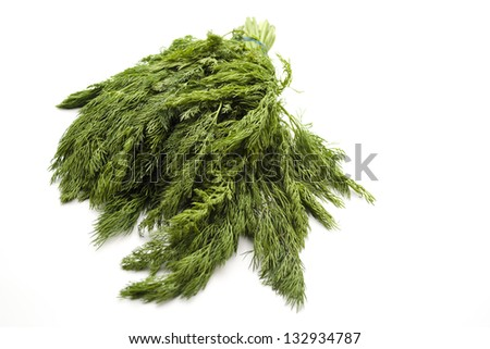Fresh Green Dill on white background