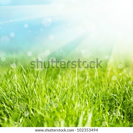 Fresh green grass and sun sky natural background - stock photo