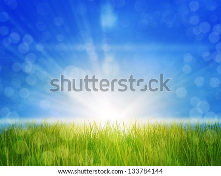 Fresh green grass in sun rays over blue sky background. - stock photo