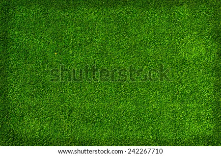 fresh green grass texture background with little border - stock photo