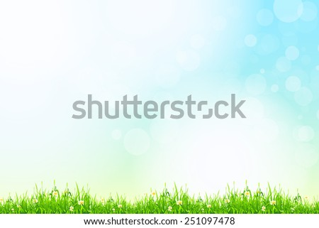Fresh green grass with blue bokeh and sunlight and flowers. Beauty natural background - stock photo
