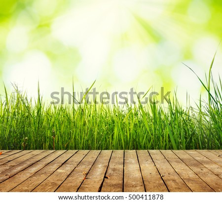Fresh green grass with bokeh and sunlight. Nature background with wooden floor